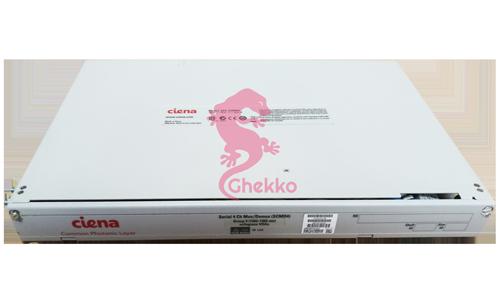 ghekko optic fibre - Ciena NTT810CJE5